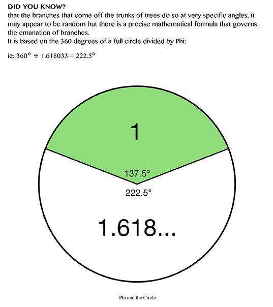 web-Wb_M4J_DivPro_p81_PhiCircle